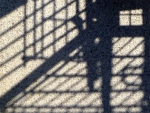 Shopping_Cart_Shadow_533