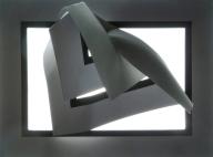 Framed Speciman_869