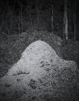 Ghost Mound_1723